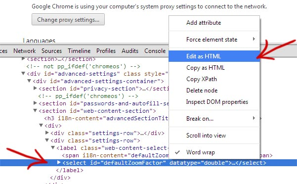 How to set a custom page zoom value in Google Chrome | Fluxbytes